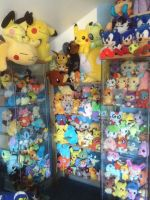 New Pokemon Plush Corner by MizukiiMoon
