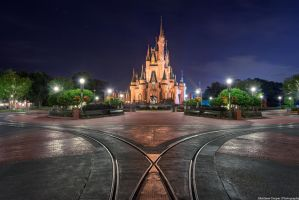 The Magic Kingdom and The Night All the People D by shaderf
