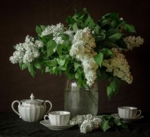 still life 10 by Demissione