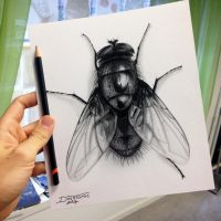 Quick Fly Drawing by AtomiccircuS