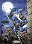 DC WOL HUNTRESS Artist Proof Sketch Card by JASONS21