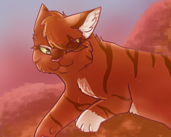 21.Squirrelflight by JasperLizard