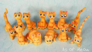 As of Meow Orange Group by kaikaku