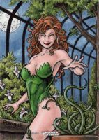 DC: Women of Legend - Poison Ivy by tonyperna