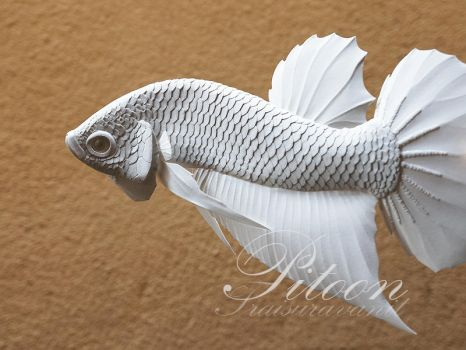 Siamese Fighting fish Paper sculpture by 8thLeo