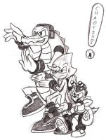 Team Chaotix! by Xaolin26