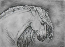 Horse Drawing by AshTwin