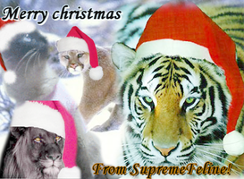 Merry christmas from Supremefeline by SupremeFeline