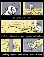 Be Kind to Moth [2] by MaryCapaldi