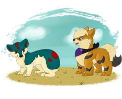 Pokemon Meet by CrabArmy