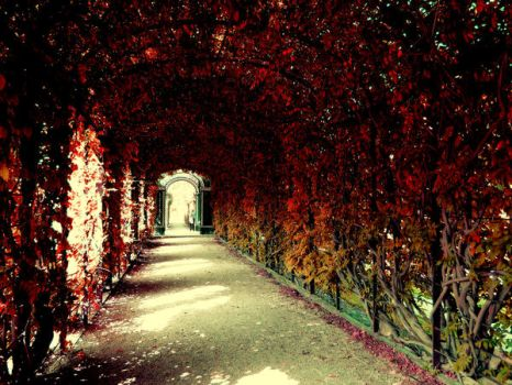 red tunnel by andr33aa