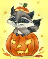 racoon by MaryannHeld