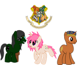 Harry Potter Ponified 10 by asdflove