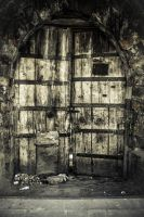 Old Door by umutcang