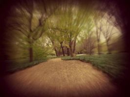 Natures Path by Blueheart1331
