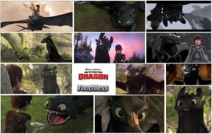 Toothless by LordOlxinator