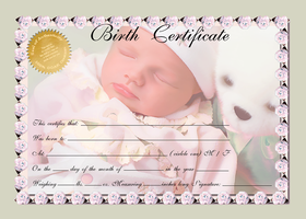 Birth Certificate- Green Multi by afox2004