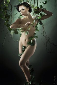Hanging Ivy by rue99