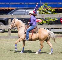 STOCK 2013 Rodeo-12 by fillyrox