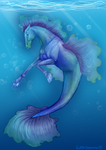 Hippocampus by EdithSparrow