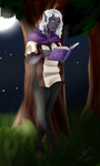 ::.Commission: Ye Art and Stuff.:: by EnyasMusicBox