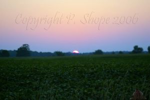 Sunset in Amish country. by pshope