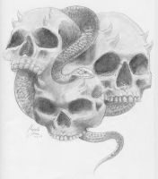 Skulls with a Snake by LifelessDemon13