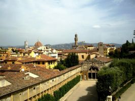 View from Palazzo Pitti by blue-crystall