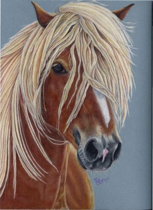 Pretty Pony Colored Pencil by MeadowDelights