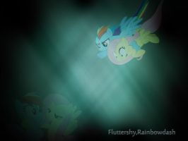 fluttershy,rainbowdash wallpaper by Dexiom