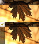 Wey Fall Large - Rainmeter Now Playing/Shortcuts by Weyarti