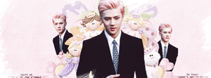 {Cover #51} Sehun (EXO) by Larry1042k1