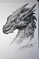 Smaug's head by banhatin