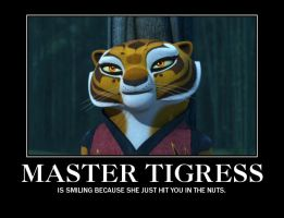 Master Tigress Demotivational by EmmyKirk14