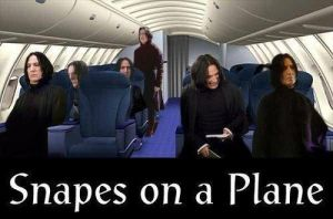 Snapes On A Plane by JulesJumper
