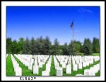 Thank You For Your Sacrifice by KLR620