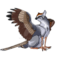 Chipping Sparrow Gryphon by Aribis