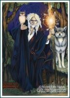 Tarot - The Sage - Card 7 by ravynnephelan