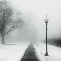 Foggy Day in the Park by jheintz21