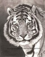 Graphite Tiger by FlyingFancy1