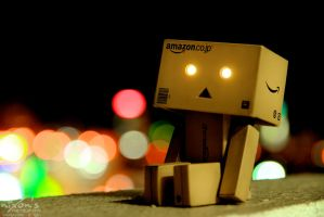 Danbo is not impressed! by fighteden