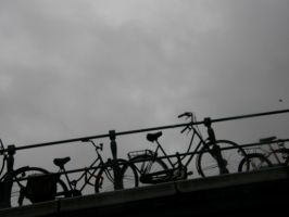 Bickes in Amsterdam by ericachan