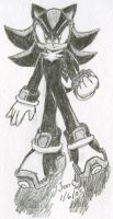 Shadow The Hedgehog by Jen-C