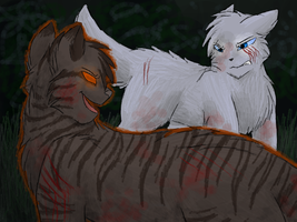 Believe in Starclan now, kittypet? by CascadingSerenity