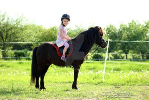 The girl and the pony by silvena