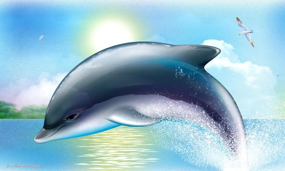 Happy Dolphin by stevemeza
