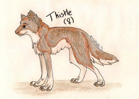 Thistle Reference by WildGriffin