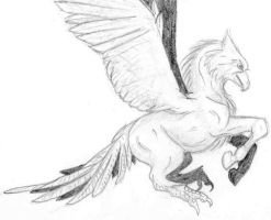 Hippogriff by BrokenRapture781