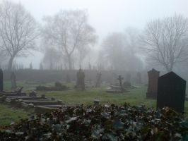 Foggy at the cemetery 4 by rudeturk