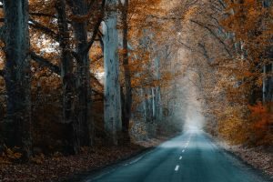 future by ildiko-neer